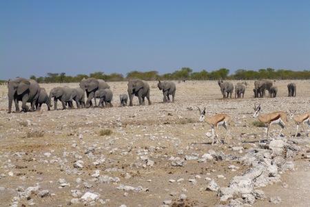 Namibia Select 090616  - 292